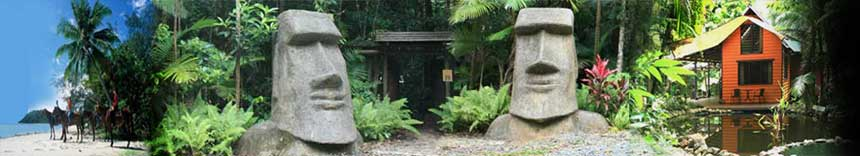 daintree accommodation