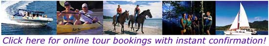 online tour bookings for cape tribulation tours and daintree tours