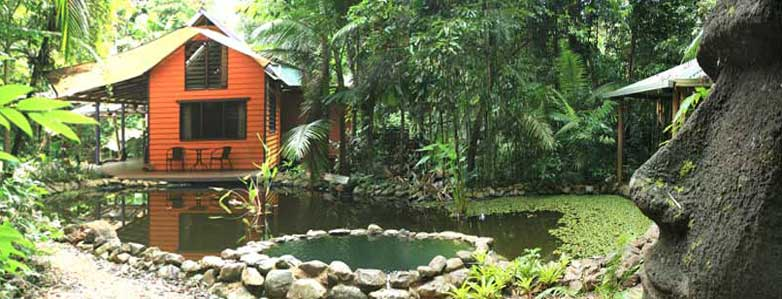 bed and breakfast in Cape Tribulation