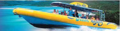 ocean rafting half day reef tours from cape tribulation